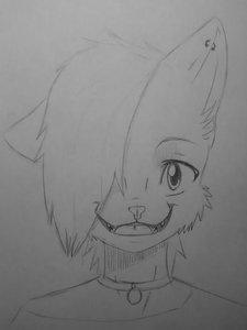 Happy kitty by YoruSnow