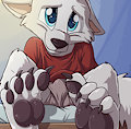 *W*_Pentrep's paws by Fuf