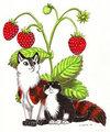 Strawberry kittens by Ikirouta