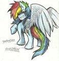 RainbowDash! by Mimy92Sonadow